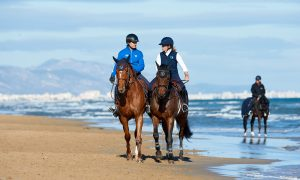 Oliva, Spain - 2016 November 9:  during CSI Mediterranean Equestrian Autumn Tour Beach. (photo: 1clicphoto.com I Herve Bonnaud)
